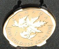 big-gold-coin.jpg