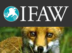 ifaw International fund for Animal Welfare launches presence in Second Life