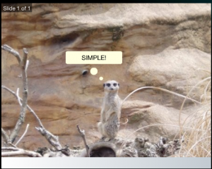 atari photo sauce meerkat 300x240 Atari launches Photo Sauce Facebook app