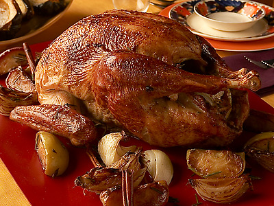 thanks goodeatsroastturkey lead FoodNetwork offers tips on how to cook a turkey